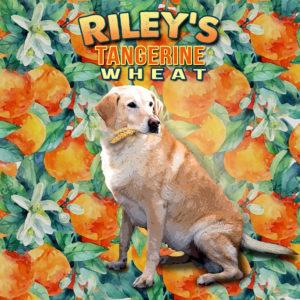 FWBC-Rileys-Tangerine-Wheat-Label
